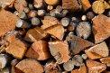 Fotografia: Farby dreva, fotograf: Lubomir Koprla, tagy: drevo, hnedá, príroda