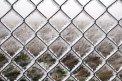 Fotografia: krajina uväznená v mraze, fotograf: Klaudia Tóthová, tagy: ľad, námraza, pole, plot