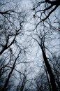 Fotografia: dostratena, fotograf: Jakub Rehák, tagy: priroda,linie