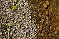 Fotografia: Farebna priroda, fotograf: Filip Tuhý, tagy: farba,kamene,priroda