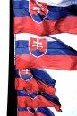 Fotografia: Naša najväčšia maličkosť, fotograf: Igor Kollárovics, tagy: Slovensko, vlajka