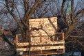 Fotografia: drevený domček na strome, fotograf: Erik Schwarz, tagy: strom, domček, konáre